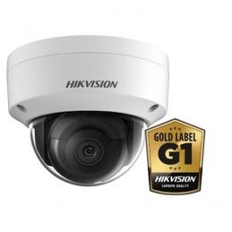 Hikvision DS-2CD2125FWD-I Wit