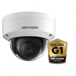 Hikvision DS-2CD2145FWD-I Wit
