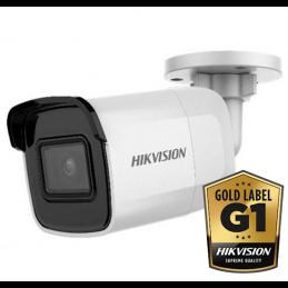 Hikvision DS-2CD2065FWD-I Wit